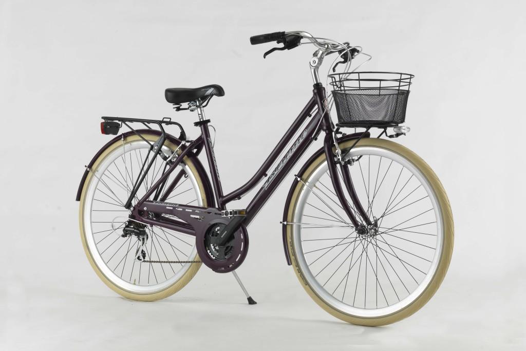 city_bike_d